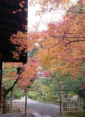 高台寺 土井 美しき庭園