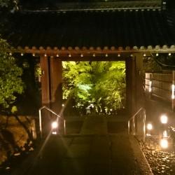 音と舞の調べ 高台寺