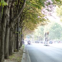 パリの交通
