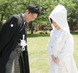 葵さんの結婚式