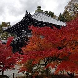 深まる秋 京都