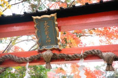 京の佳き日紹介 大原野神社