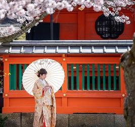 桜の季節  京都前撮り TANAN丹庵・LST WEDDING