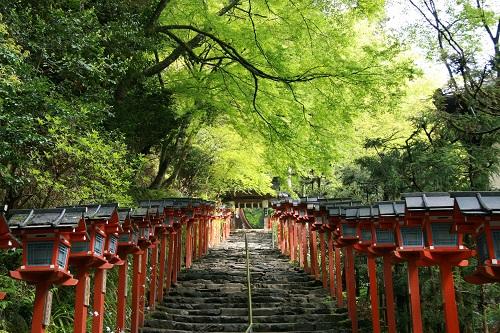 京都結婚式 神社さまのムービー