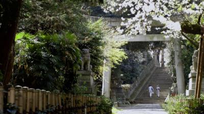 赤坂氷川神社さん LSTウエディング